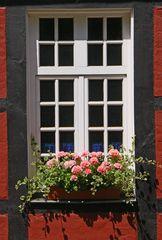 Fensterportfolio: Fachwerkretro