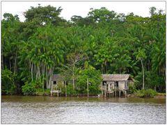 Ferienwohnung im Amazonas 2 :-)