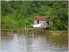 Ferienwohnung im Amazonas 3 :-)