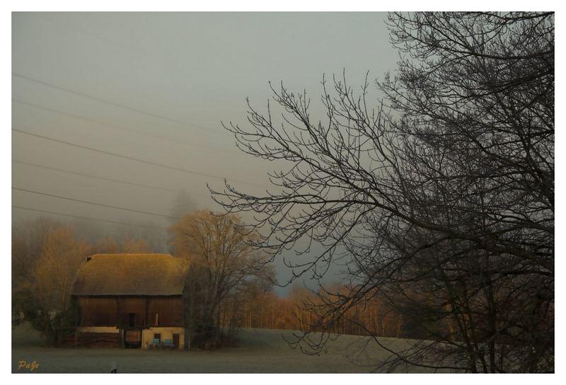 Ferme perdue dans la brume !