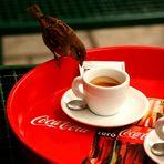 fermo! quello è il mio caffè!!