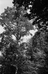 Fernsehturm_Stuttgart_2