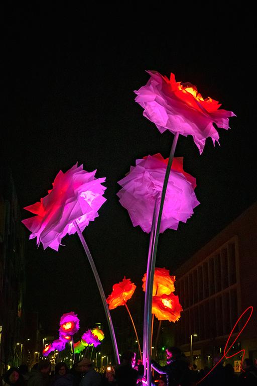 Festa de la Llum 2019