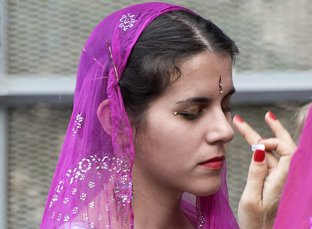 Festival de la India en Madrid ( III )