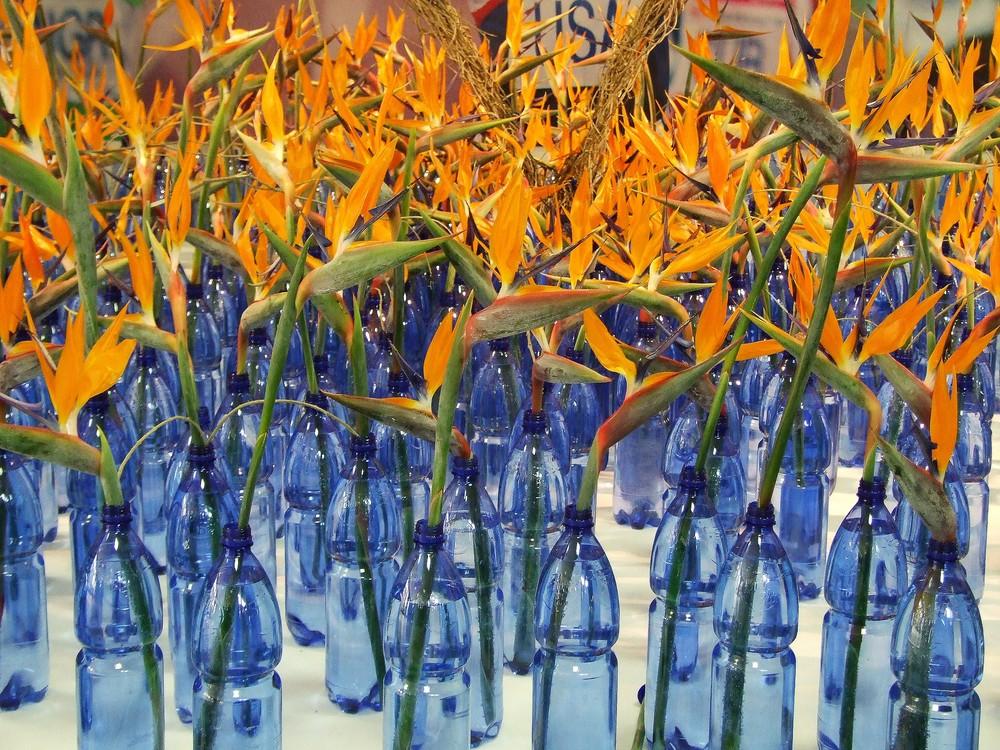 Festival dei fiori Sanremo