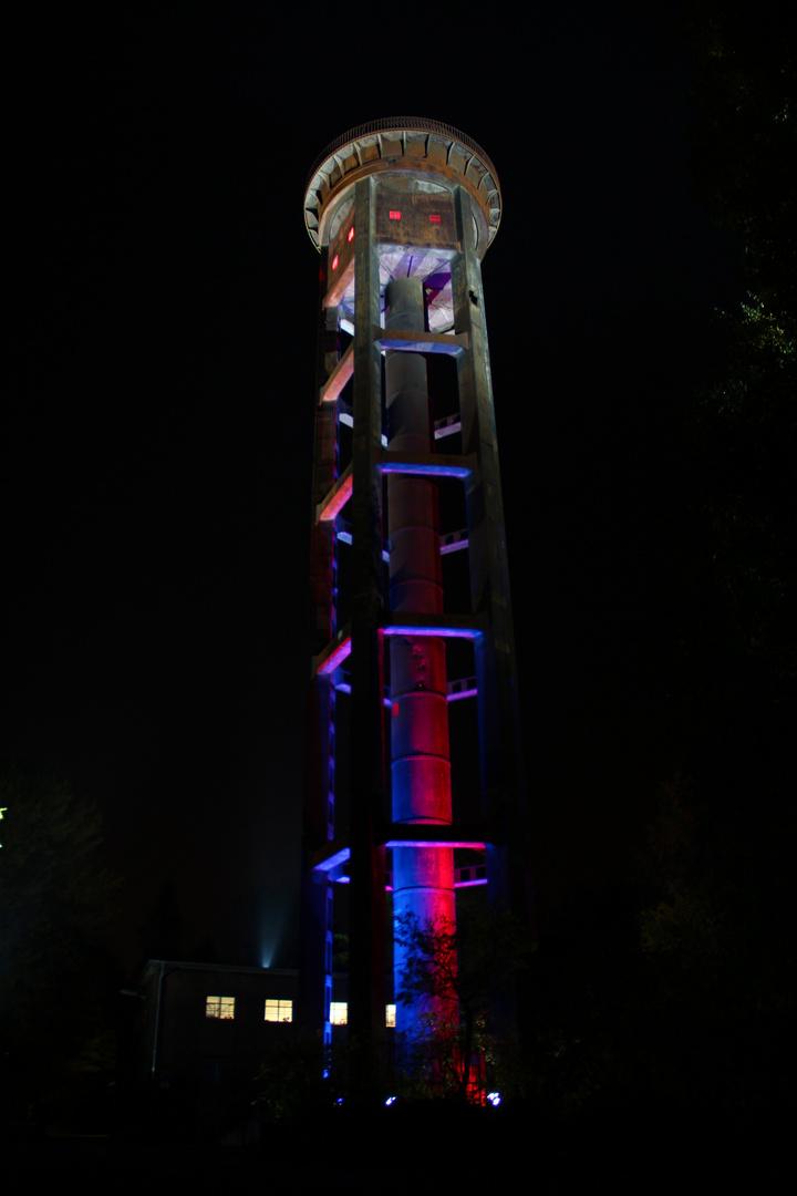 Festival of Lights 2012-6