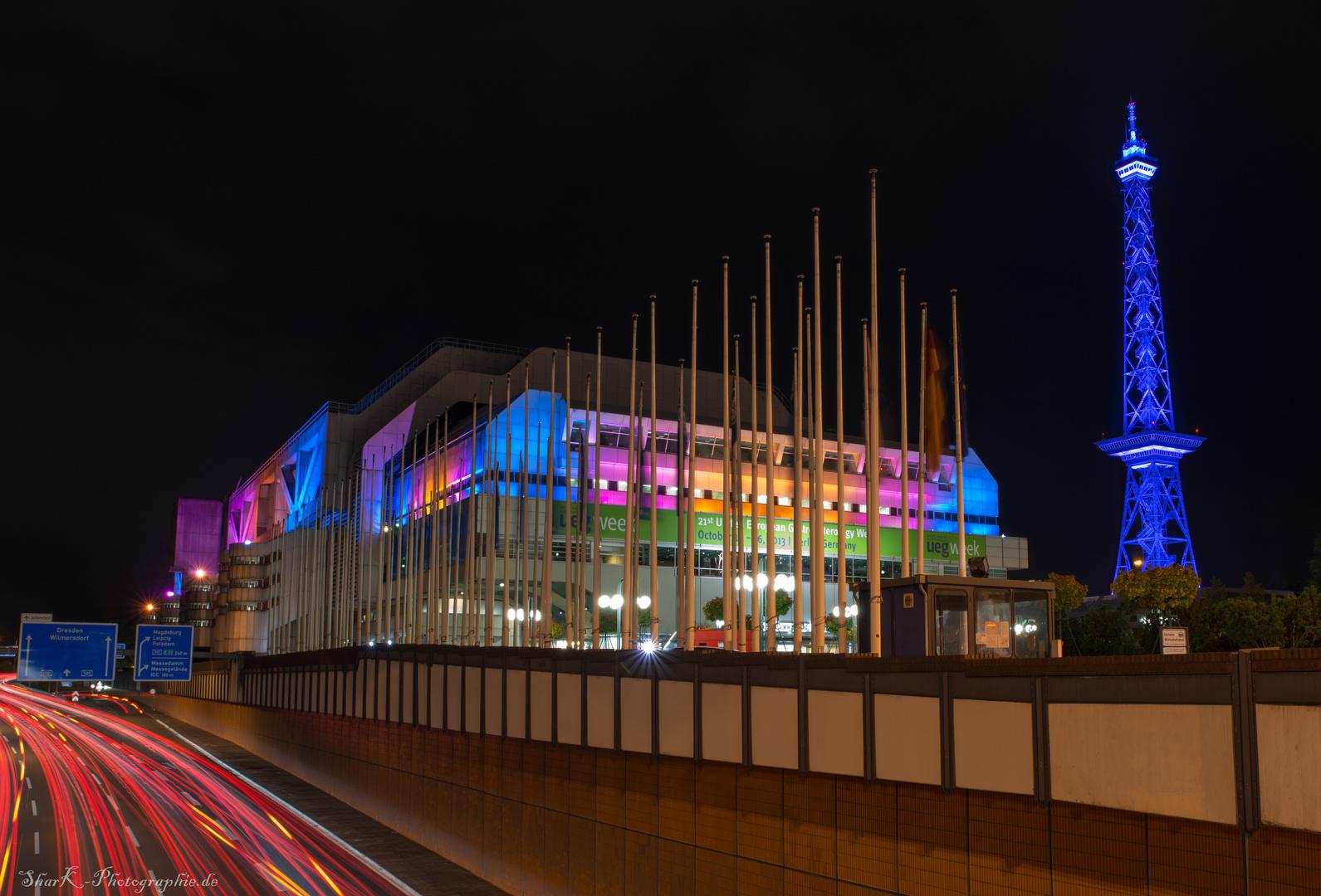 Festival of Lights 2013 - ICC
