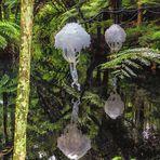 Festival of Lights im Pukekura Park, New Plymouth, Neuseeland