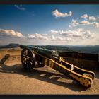 Festung Königstein #10 Kannone ...