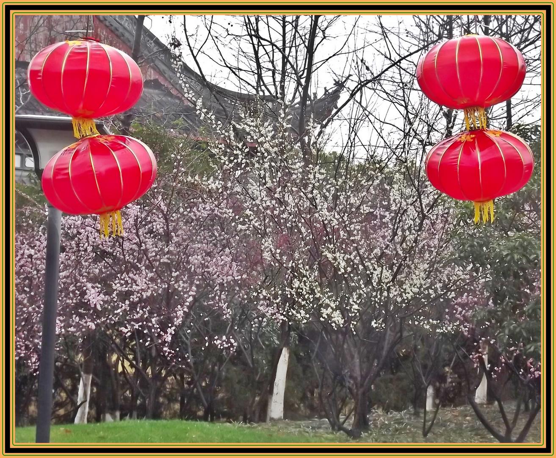 feuchter Fruehling in Hang Zhou ;
