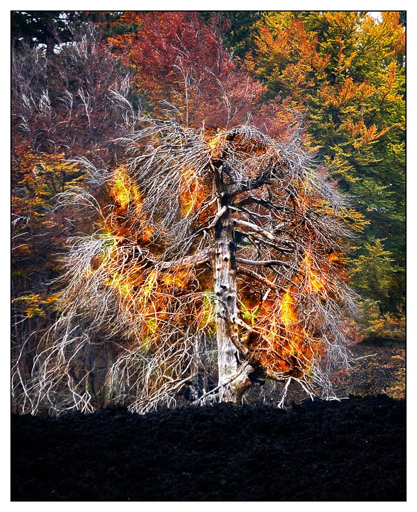 Feuer am Vulkan