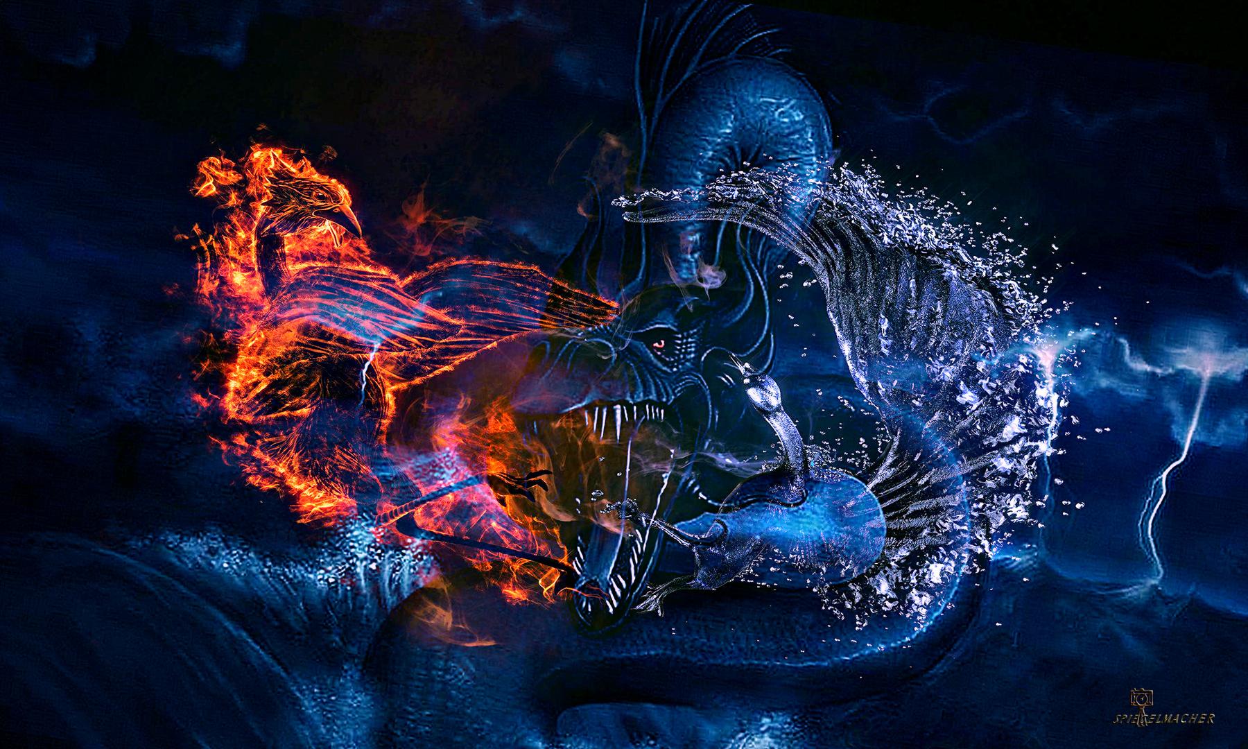 Feuer Wasser Drachen Foto Bild Fotos Art Fun Bilder Auf
