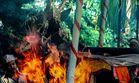 Feuerbestattung auf Bali