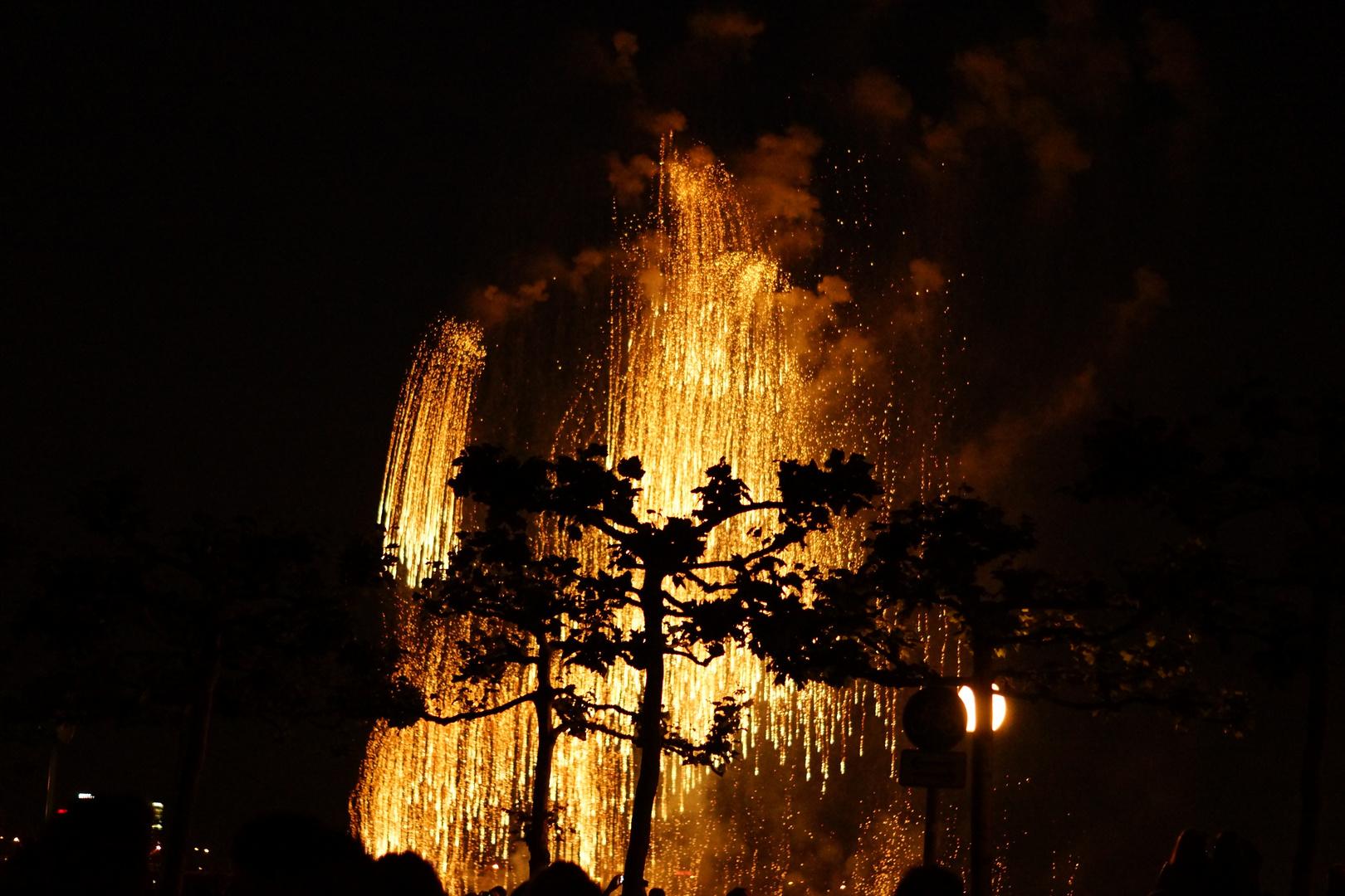 Feuerwek Japantag 2015