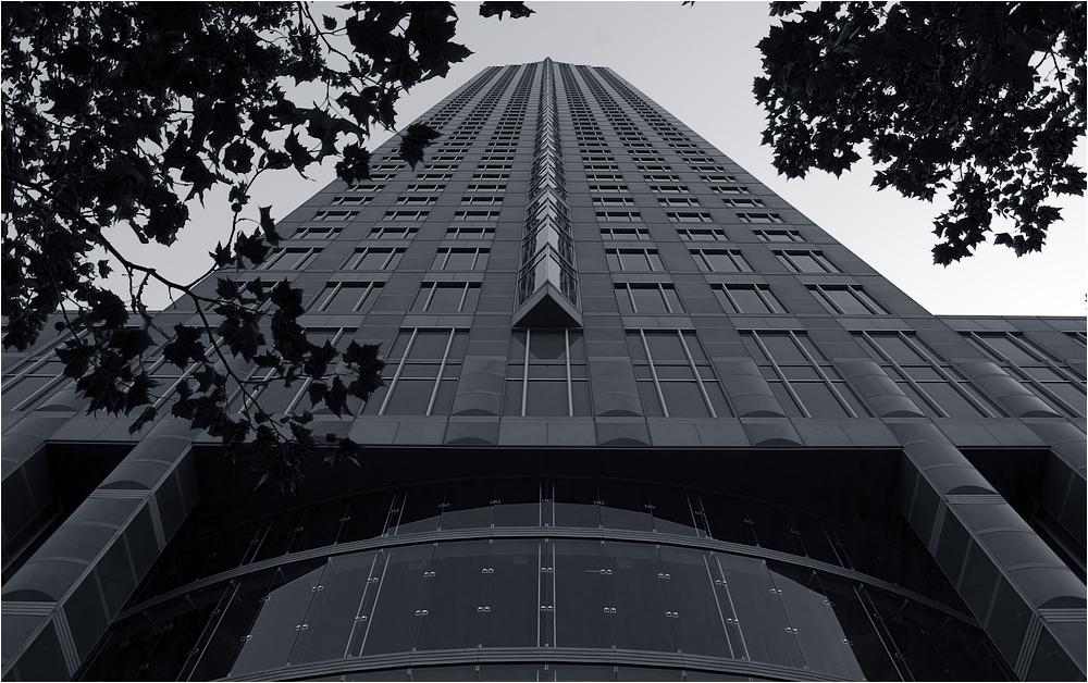 Ffm Messeturm
