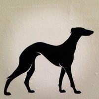 Fiberhund