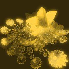 fibouquet of flowersn