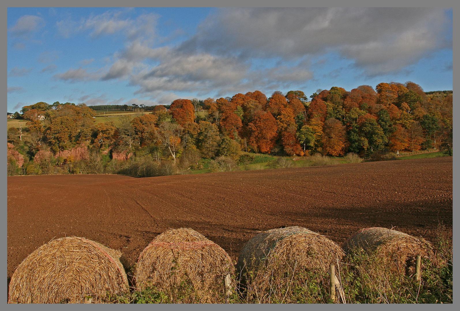 field near glendouglas jedburgh