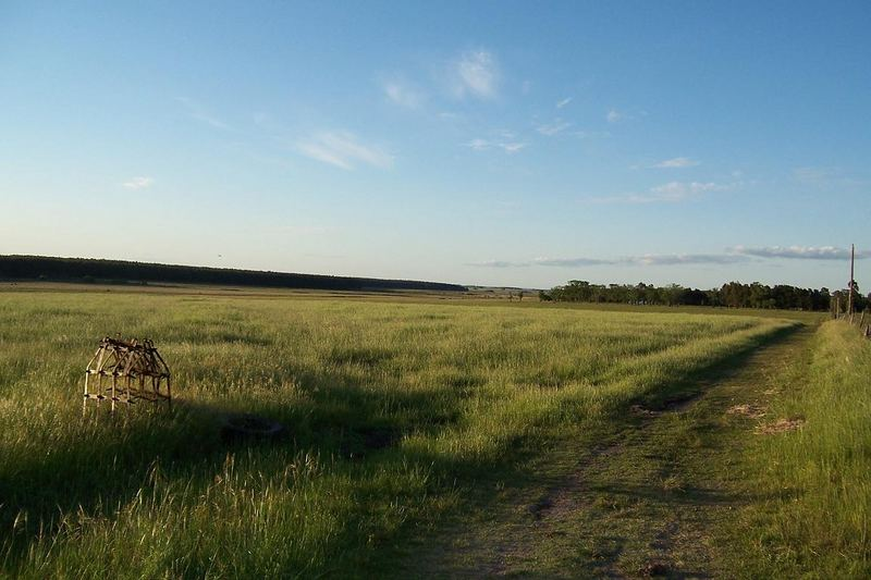 Fields in Uruguay / South America