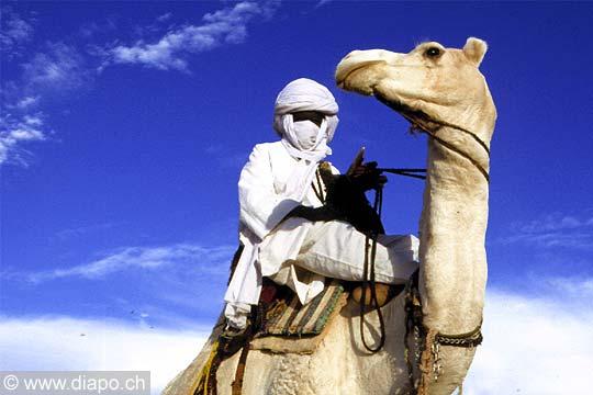 Fier sur son chameau