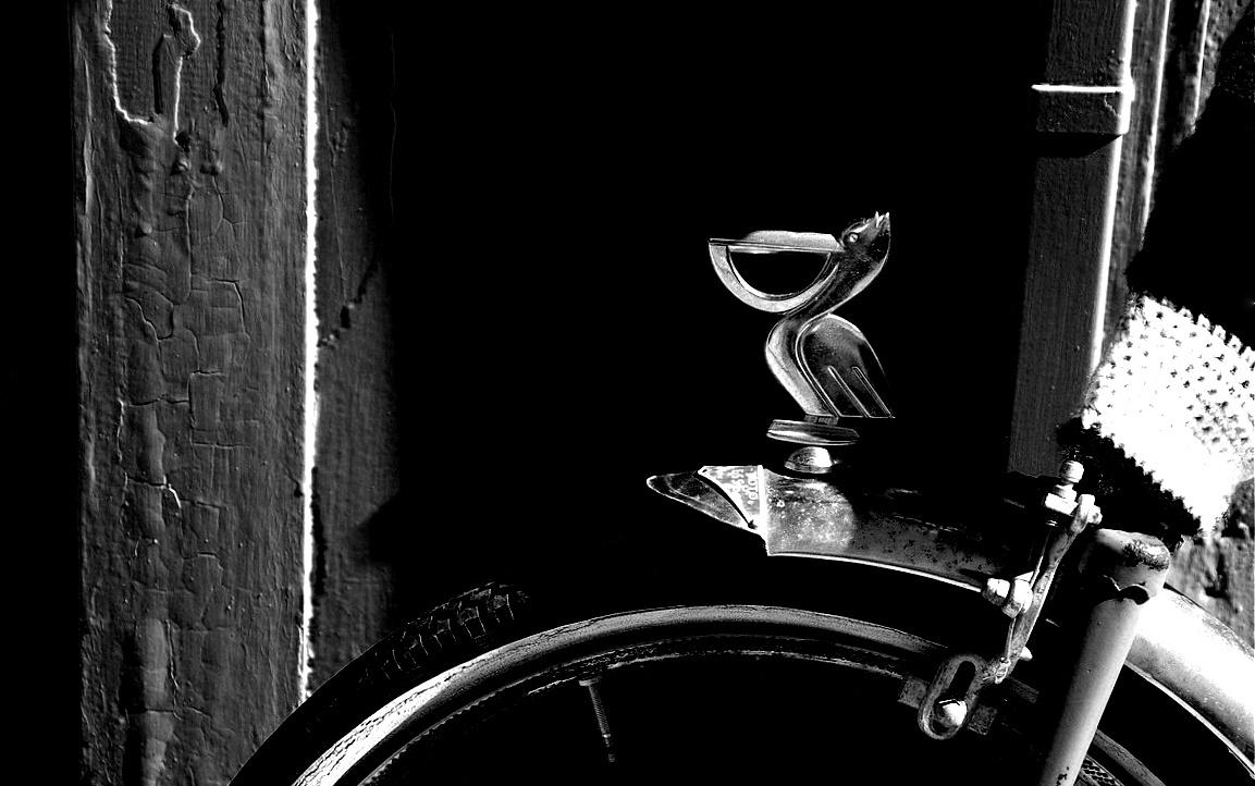 Figure de roue...