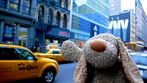 Fikki needs a cab!