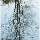 Filigrane Baumstrukturen