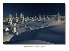 Winter Lapland 2013