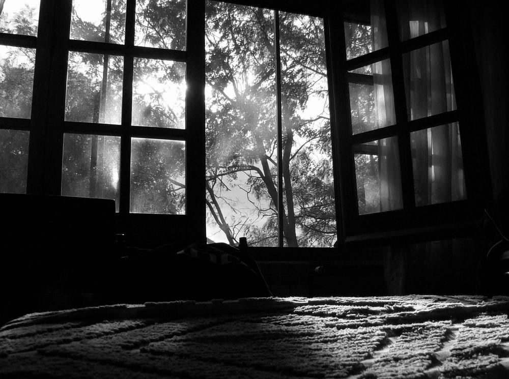 """""""Fine estate"""" di Andrea Murtas"""