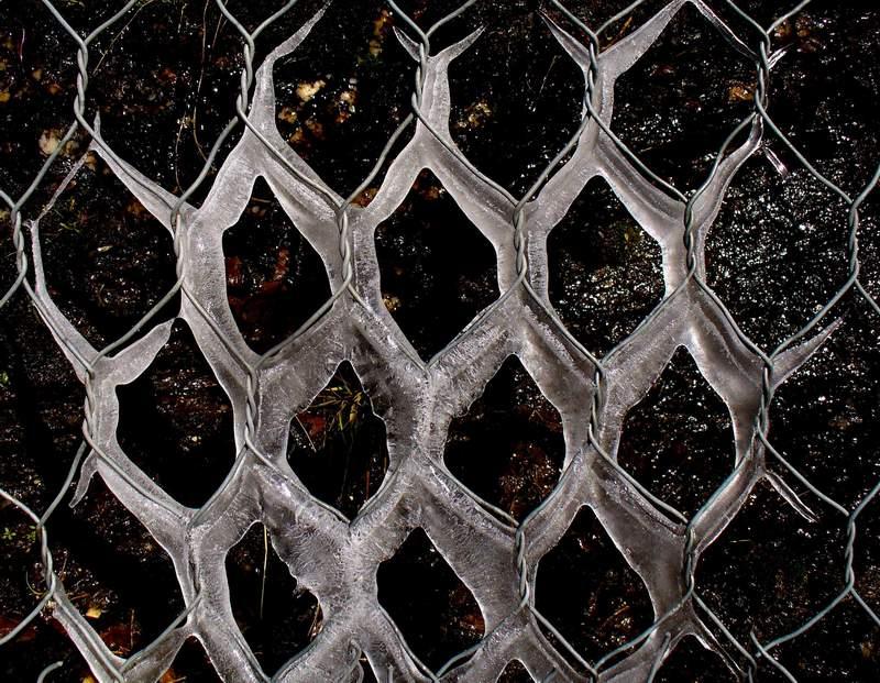 """""""Fine inverno 2009: composizione"""" di Sal Messina"""