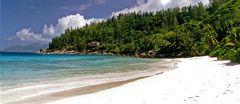 FINEST BEACH