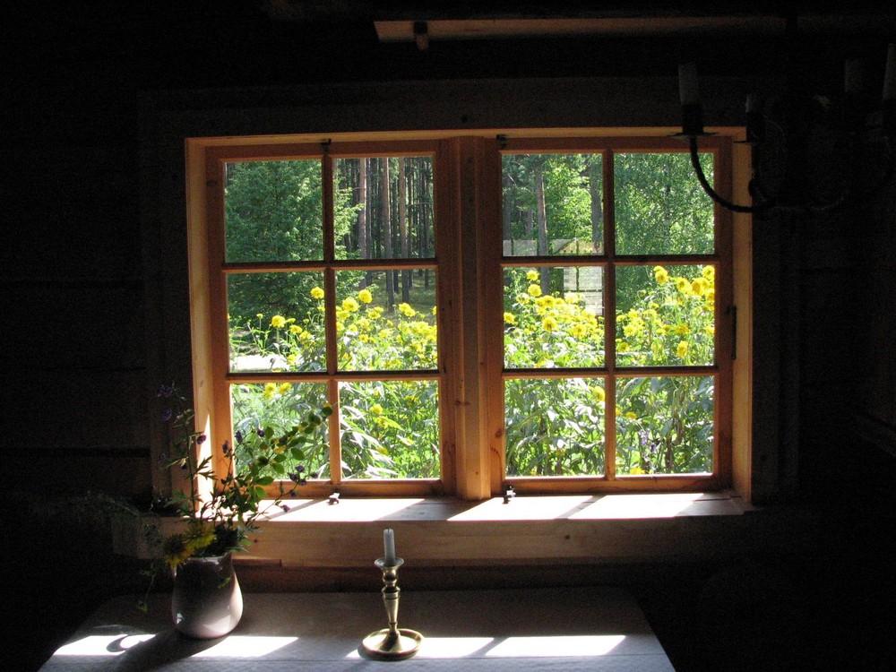 Finestra sul bosco in lituania foto immagini paesaggi for Finestra immagini