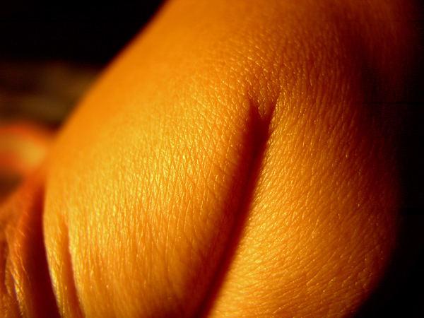 fingerscape