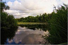 Finkenmoorweiher