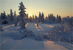 Finland - Winter