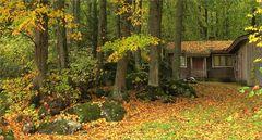 Finnische Herbstfarben