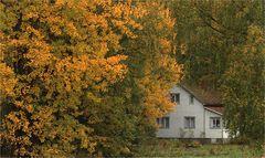 Finnischer Herbst