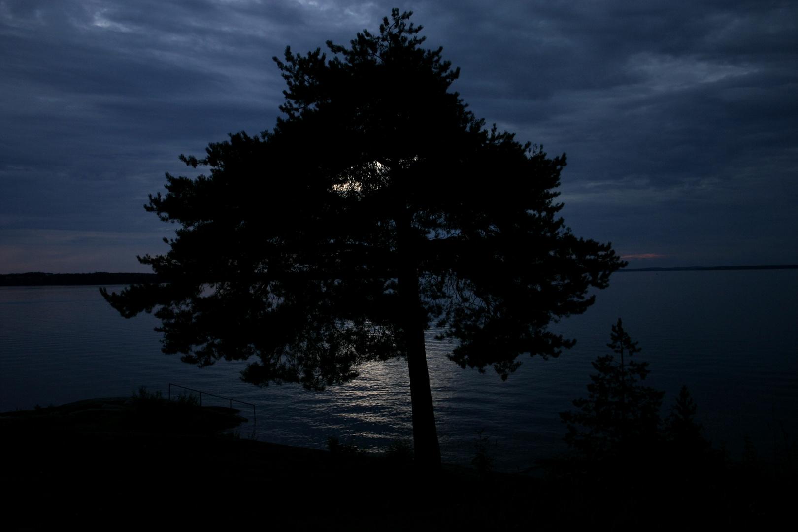 Finnish Nights