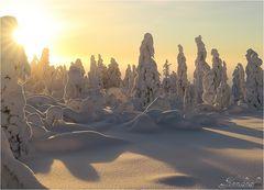 Finnland 2016