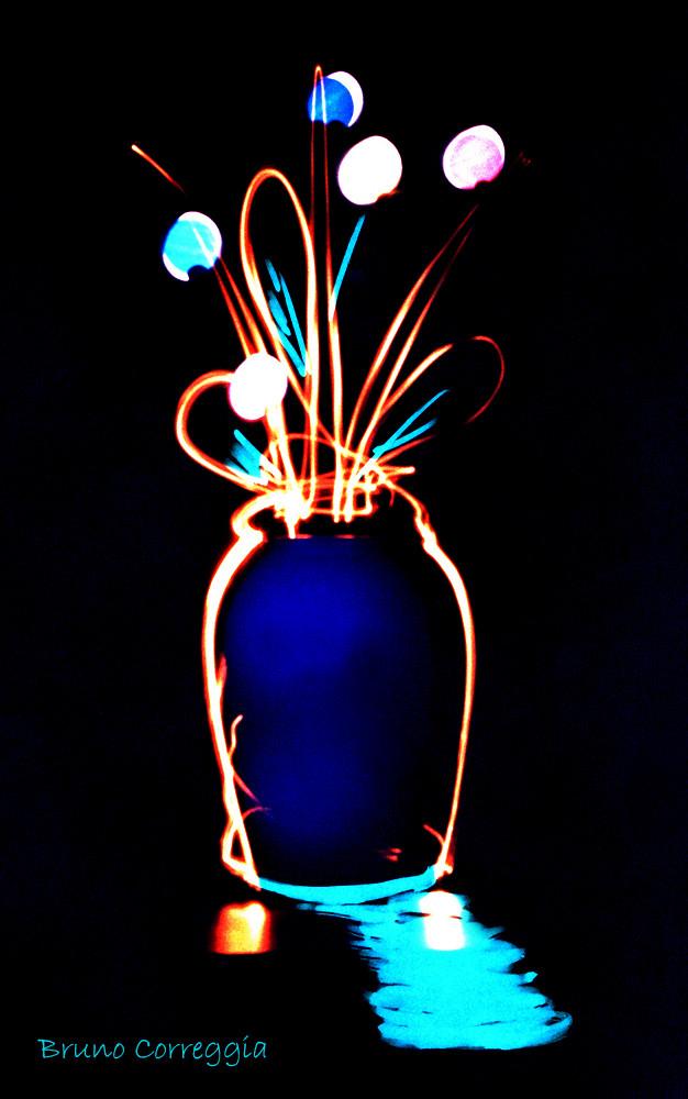 Fiori di luce