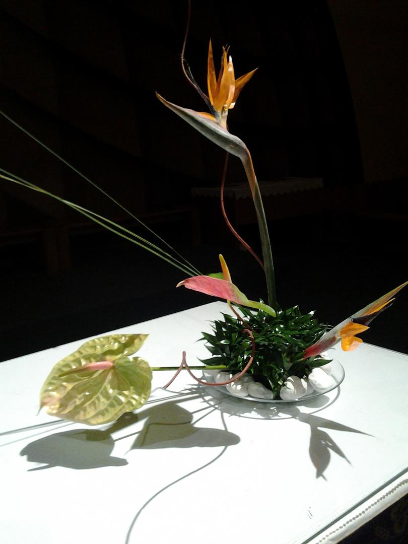 fiori per Giuliana