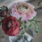 fiori..e colori....
