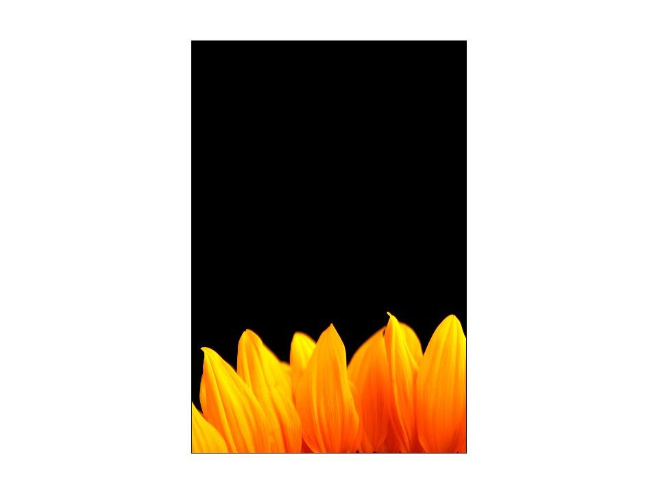 [ fire ]
