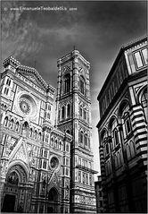 Firenze bn