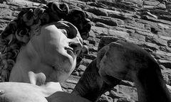 Firenze - David di Michelangelo - Particolare