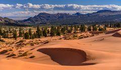 First Dune, Coral Pink Sand Dunes SP, Utah, USA