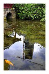 Fisch, Brücke, Spiegelung
