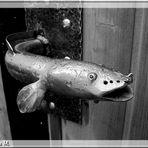 Fisch im Dienst  (mit Gedicht)