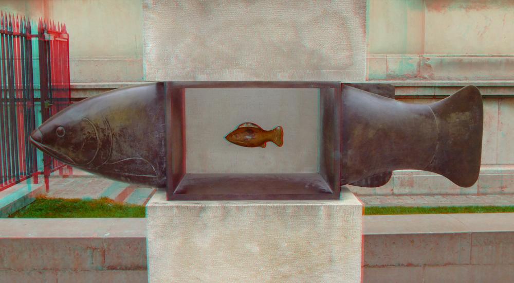 Fisch im Stein