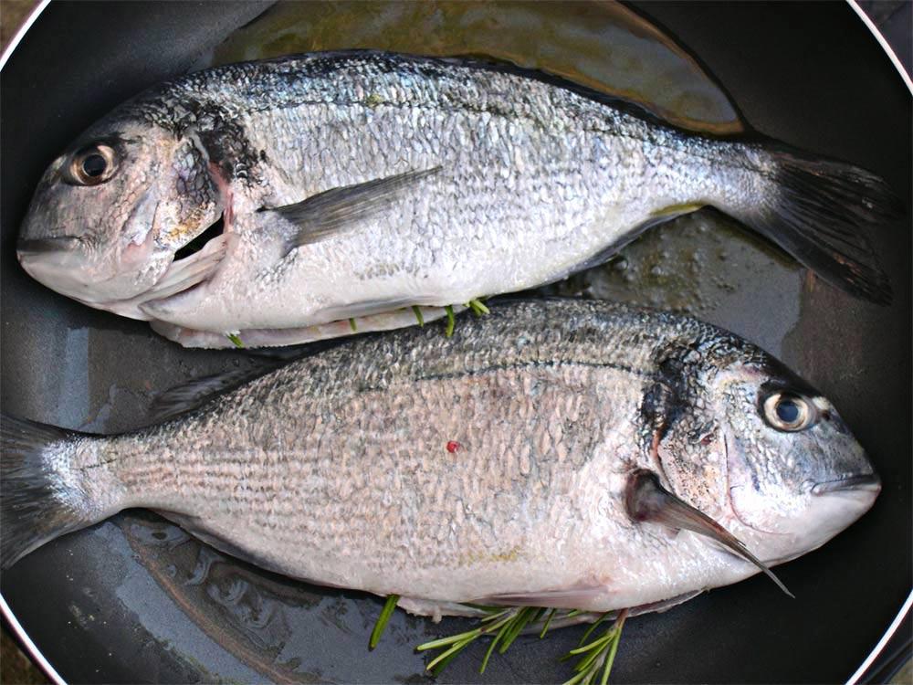 Fisch in der Pfanne